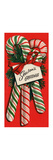 Greeting Card - Holly Season's Greetings, 3 Striped Candy Canes, National Museum of American Histor Giclee Print