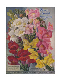 Giant Snapdragons, Perry Seed Company Giclee Print