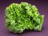 MineralCalendar: Pyromorphite. Ussel, France Photographic Print