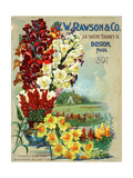 W.W. Rawson and Co. Giclee Print