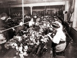 Women Workers Sewing Teddy Bears in an Sweat Shop Assembly Line, 1915 Prints