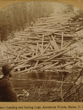 Felled Logs Ready to Enter the Aroostook River in Maine, 1903 Photo
