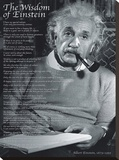 The Wisdom of Einstein Stretched Canvas Print