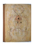 Human Circulation System from Mansur's Anatomy by 15th C. Persian Mansur Ibn Ilyas Art