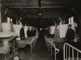 Influenza Ward at US Army Base Hospital in Langres, France During Spanish Flu Epidemic, 1918-19 Prints