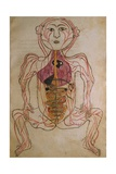 Human Circulation System from Mansur's Anatomy by 15th C. Persian Mansur Ibn Ilyas Prints