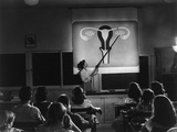Sex Education Class in Oregon Junior High Shows Diagram of Productive Organs, 1948 Print