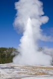 Old Faithful Geyser Yellowstone National Park, Wyoming, 2005 Photo