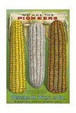 Seed Catalog Captions (2012): Oscar H. Will and Co, Bismarck, North Dakota, 1917 Giclee Print