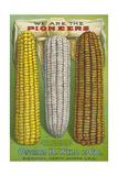 Seed Catalog Captions (2012): Oscar H. Will and Co, Bismarck, North Dakota, 1917 Giclee Print
