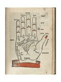 Hand with Palmist Markings from Magnus Hundt's Antropologium, 1501 Posters