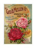 Seed Catalogues: The Geo. H. Mellen Co. Condensed Catalogue of Special Offers Impressão giclée