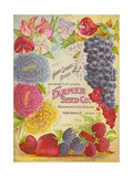 Seed Catalogues: Farmer Seed Co. Farm and Garden Seeds, Spring 1906 Giclee Print