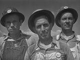 Construction Workers at Watts Bar Dam Tennessee. June 1942 Prints