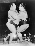 Japanese Sumo Wrestlers, Kiyoji Kagamisato and Junnosuke Yoshibayama, 1952 Photographie