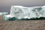 Icebergs Melt During the Southern Hemisphere Summer. 2006 Print