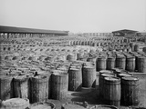 Hundreds of Barrels on the Wharf of Savannah, Georgia, Ca. 1904 Posters