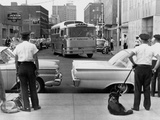 Policemen Watch as 'Freedom Riders' Arrive in Jackson, Mississippi, May 24, 1961 Photo