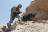 US Soldier and His Working Dog Search for a Weapons in Afghanistan, 2010 Photographic Print