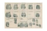 Fingerprint Record Sheet Prints