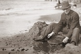 Man Panning Gold on Nome, Alaska, Beach in the Early 20th Century Prints