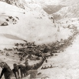 Long Ribbon of Miners Bound For the Klondike Gold Fields Climbing over the Chilcoot Pass, in 1898 Photo