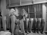 Fabric Technician Examines the Cotton Stockings to Replace Silk in WW2 Photo