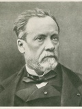 Louis Pasteur (1822-1895), French Chemist and Microbiologist, Ca. 1870 Photo