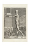 Musculature Plate from 18th Century Anatomy Treatise by Bernhard Albinus Print