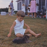 President Kennedy's Two Year Old Son, John Jr. Playing with a Puppy, Aug. 3, 1963 Photo