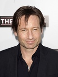 David Duchovny Arrives at the Joneses Premiere, Arclight Hollywood, Los Angeles, CA, Apr 8, 2010 Photo