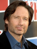 David Duchovny at Third Annual VH1 Rock Honors: The Who, Los Angeles, CA, Jul 12, 2008 Photo