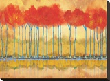 Amber Afternooon Riverbank Stretched Canvas Print by Toy Jones