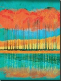 Autumn Pond Stretched Canvas Print by Toy Jones