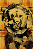 Plaid Bear Prints by Ingrid Van Den Brand