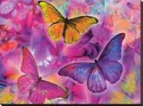 Rainbow Orchid Morpheus Stretched Canvas Print by Alixandra Mullins