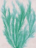 Emerald Sea IV Posters by Henry Bradbury