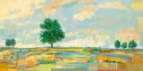 High Plains Prints by Hazel Barker
