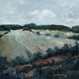 Serene Landscape 5 Posters av Jacques Clement