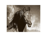 Wild as the Wind Giclee Print by Barry Hart