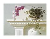Mantelpiece Orchid Giclee Print by Zhen-Huan Lu