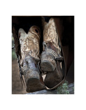 Boots 'n Spurs V Giclee Print by Barry Hart