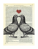 Pigeons in Love Giclee Print by Marion Mcconaghie