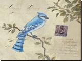 Birds 4 Reproduction sur toile tendue par Kurt Novak