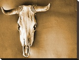 Sepia Steer Stretched Canvas Print by Kari Brooks