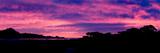 Sunset Silhouette Fotografisk trykk av Howard Ruby