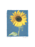 Summer II Premium Giclee Print by Amy Melious