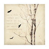 Birds and Branches II Giclee Print by Amy Melious