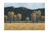 Cottonwood Country II Premium Giclee Print by John Macnab