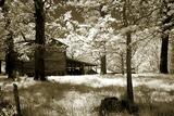 Smokehouse Photographic Print by Alan Hausenflock